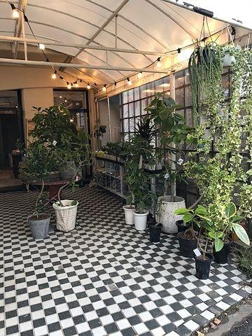 国分寺「LAND」の新店舗「DAN」の屋外 観葉植物の販売