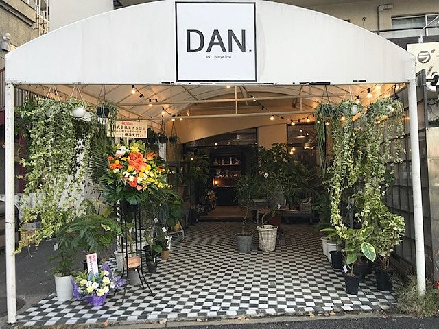 「LAND」の新店舗「DAN」 骨董品 観葉植物の販売