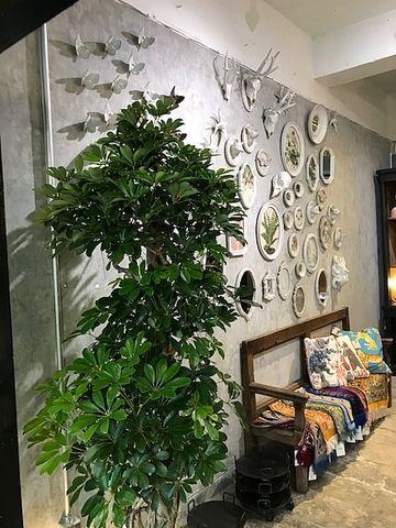 国分寺「LAND」の新店舗「DAN」の店内