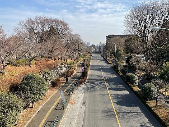 緑あふれる国分寺を代表する公園      【武蔵国分寺公園】